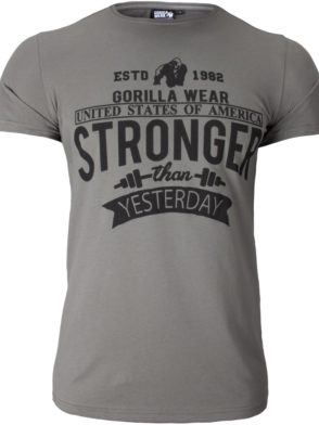 Gorilla Wear Hobbs T-shirt – gray