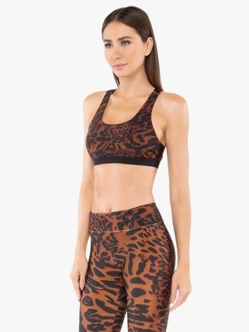 Koral Tax Cheetara Sports Bra – Brwon